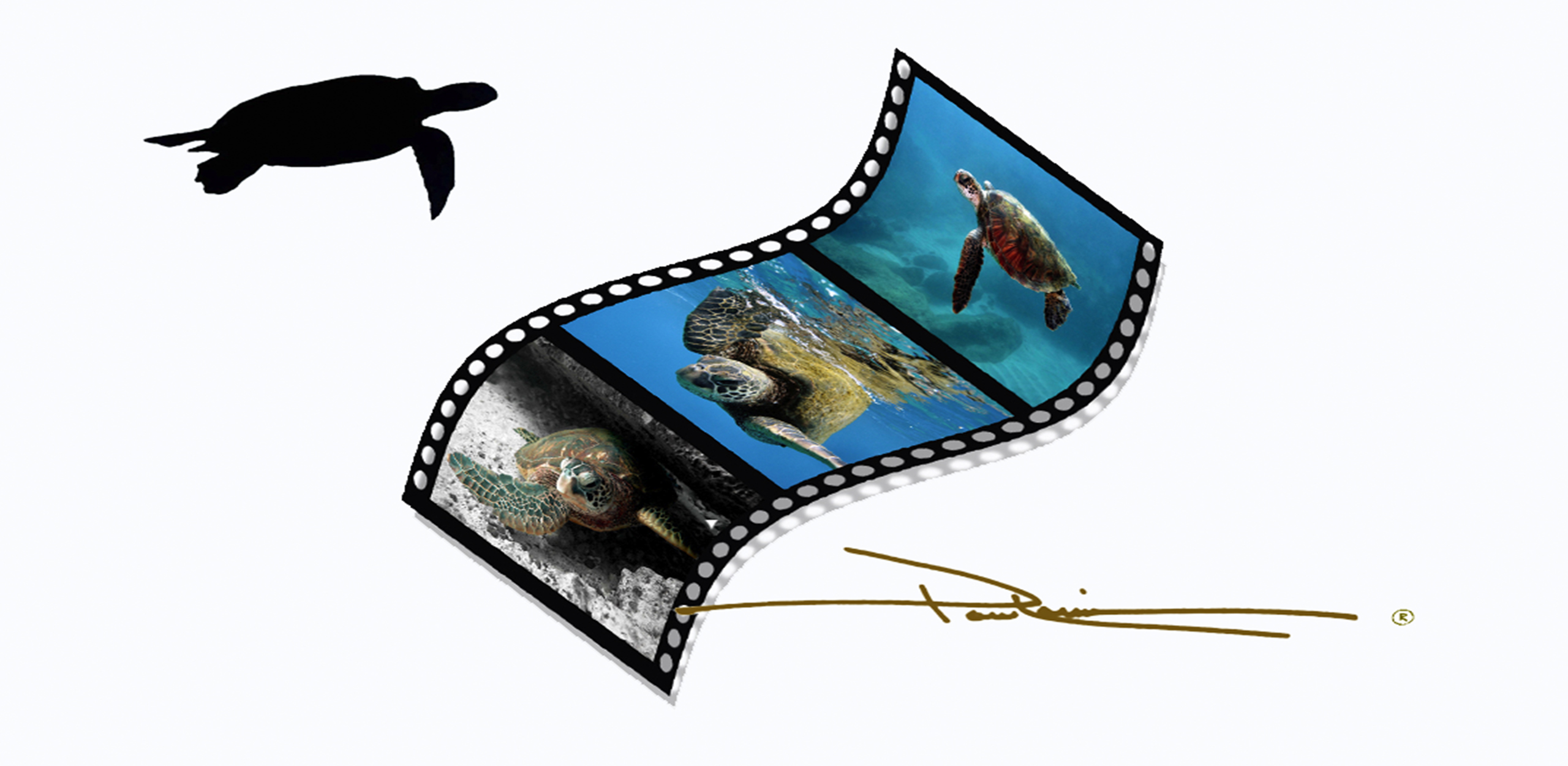 OAH Film Stip
