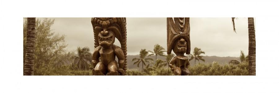 Polynesia Tiki 29